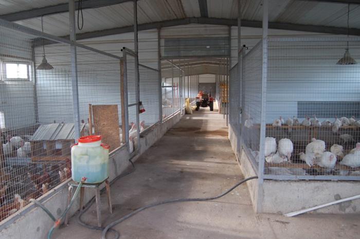 строительство мини фермы